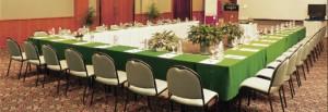 amara conferenceroom