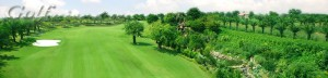 course-wide-long-thanh-golf-club-6