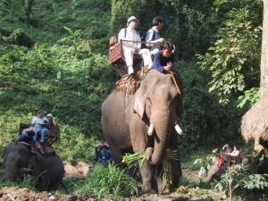 thailandlarge006