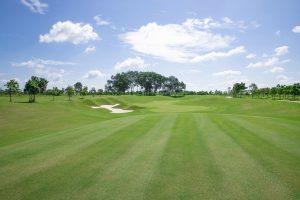 Hamonie Golf Park-2