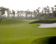 golf court13