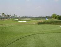 golf court14