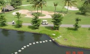 paradise-golf-course5