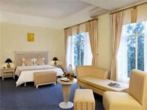 sandy suite